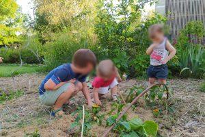 Atelier enfants au potager